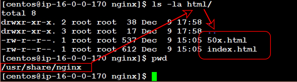 The default webserver document directory of NGINX with an example website