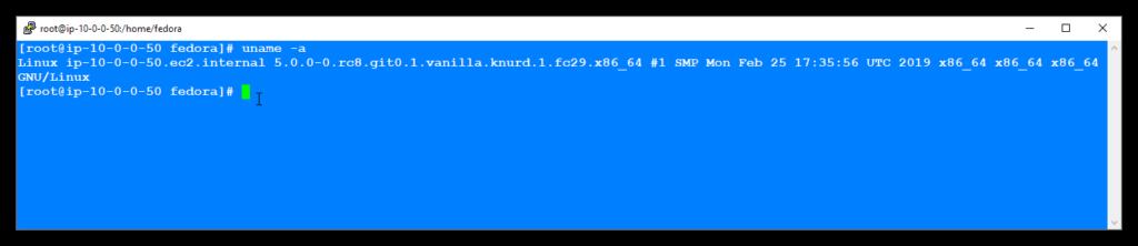 Linux Kernel 5.0 (Fedora 29)